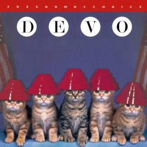 the-kitten-covers-devo